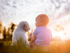 dziecko i pies siedzą na trawie